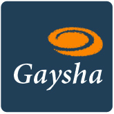Gaysha Surfaces